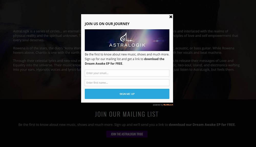 Website Signup Form