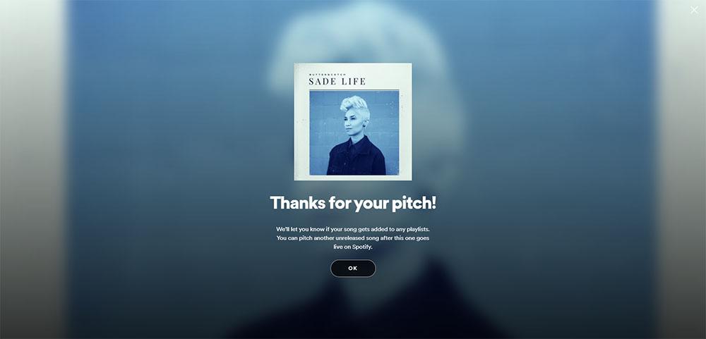 Spotify Playlist Pitch